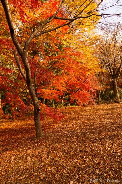 三王山自然公園