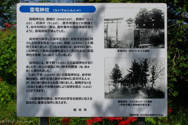 渡良瀬遊水地